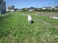 IMG_3765blog.JPG